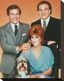 Hart to Hart Stretched Canvas Print