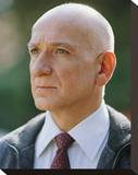 Ben Kingsley Stretched Canvas Print