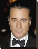Andy Garcia Stretched Canvas Print