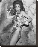 Angelique Pettyjohn Stretched Canvas Print