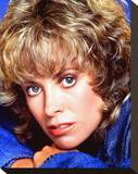 Catherine Hicks Stretched Canvas Print