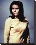 Diana Rigg - The Avengers Stretched Canvas Print