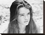 Brooke Shields - The Blue Lagoon Stretched Canvas Print