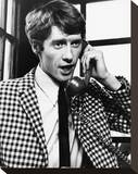 Michael Crawford Stretched Canvas Print