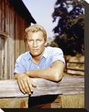 Roy Thinnes Stretched Canvas Print