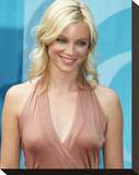 Amy Smart Stretched Canvas Print