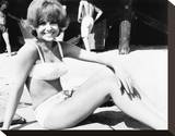 Deborah Walley Stretched Canvas Print