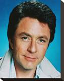 Bill Bixby Stretched Canvas Print