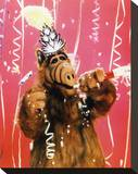 ALF Stretched Canvas Print