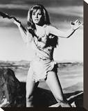 Raquel Welch Stretched Canvas Print