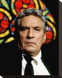 Peter Finch - Network Stretched Canvas Print