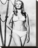 Veronica Carlson Stretched Canvas Print