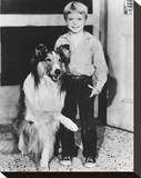 Jon Provost Stretched Canvas Print