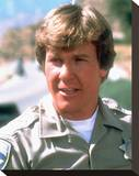 Larry Wilcox Stretched Canvas Print