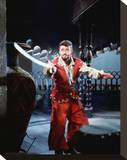 Captain Sindbad Stretched Canvas Print