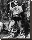 Steve Reeves Stretched Canvas Print
