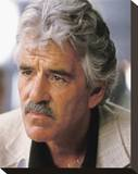 Dennis Farina Stretched Canvas Print