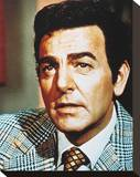 Mannix Stretched Canvas Print