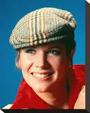 Debby Boone Stretched Canvas Print