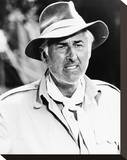 Stewart Granger - The Last Safari Stretched Canvas Print
