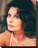 Sophia Loren Stretched Canvas Print