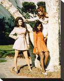 Beyond the Valley of the Dolls Stretched Canvas Print