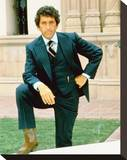 Barry Newman - Petrocelli Stretched Canvas Print