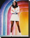 Erin Gray Stretched Canvas Print