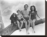 Tarzan Finds a Son! Stretched Canvas Print