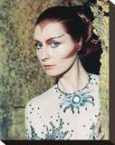 Catherine Schell - Space: 1999 Stretched Canvas Print