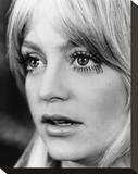 Goldie Hawn - Shampoo Stretched Canvas Print