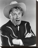 Chill Wills Stretched Canvas Print