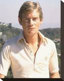Anthony Andrews Stretched Canvas Print