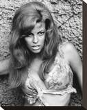 Raquel Welch - One Million Years B.C. Stretched Canvas Print