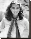 Brooke Shields - Wanda Nevada Stretched Canvas Print