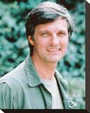 Alan Alda Stretched Canvas Print