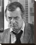 David Janssen - Harry O Stretched Canvas Print