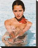 Barbara Carrera Stretched Canvas Print
