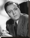 Richard Attenborough Stretched Canvas Print