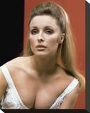 Sharon Tate Stretched Canvas Print