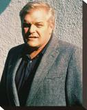 Brian Dennehy Stretched Canvas Print