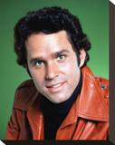 Gregory Harrison - Logan's Run Stretched Canvas Print
