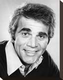 Alex Rocco Stretched Canvas Print