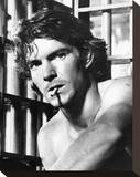 Dennis Quaid - The Night the Lights Went Out in Georgia Stretched Canvas Print