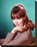 Barbara Feldon - Get Smart Stretched Canvas Print