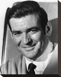 Rod Taylor - The V.I.P.s Stretched Canvas Print