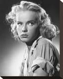 Anne Francis Stretched Canvas Print