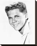 Tony Dow, Leave It to Beaver (1957) Stretched Canvas Print