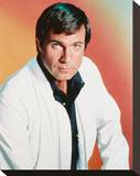 Gil Gerard, Buck Rogers in the 25th Century Stretched Canvas Print