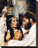 The Taming of the Shrew (1967) Stretched Canvas Print